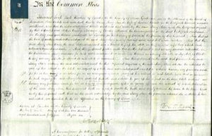 Court of Common Pleas - Mary Ann Coombe-Original Ancestry