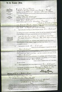 Court of Common Pleas - Ann Colenutt-Original Ancestry