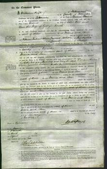 Court of Common Pleas - Maria Bell and Ann Death-Original Ancestry