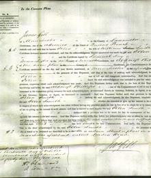 Court of Common Pleas - Ellen Smith-Original Ancestry