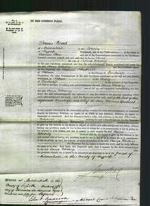 Court of Common Pleas - Anna Whiting-Original Ancestry