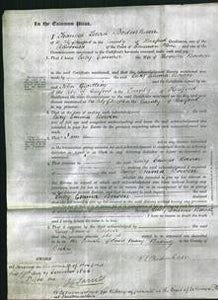 Court of Common Pleas - Lucy Emma Bowen-Original Ancestry