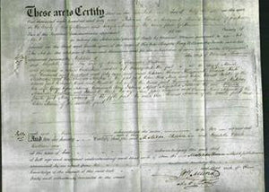 Deed by Married Women - Matilda Cheesman and Elizabeth Clark Bentham-Original Ancestry