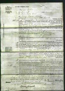 Court of Common Pleas - Ann Ingrams and Jane Sharman-Original Ancestry