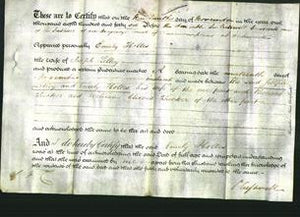 Deed by Married Women - Emily Holles Lilley-Original Ancestry