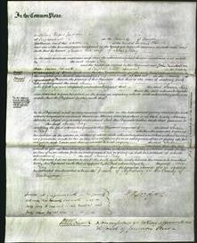 Court of Common Pleas - Susan Kay-Original Ancestry