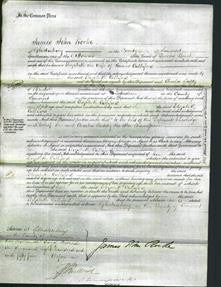 Court of Common Pleas - Elizabeth Culliford-Original Ancestry