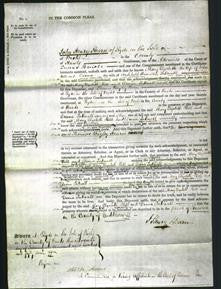 Court of Common Pleas - Mary Elizabeth Hill and Diana Tattnall-Original Ancestry