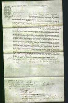 Court of Common Pleas - Elizabeth Bywater-Original Ancestry