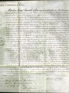 Court of Common Pleas - Mary Norris, Jane Norris and Ann Rebecca Norris-Original Ancestry