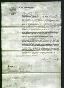 Court of Common Pleas - Agnes Ruth Stutley-Original Ancestry