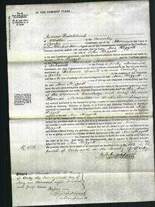 Court of Common Pleas - Ann Higgott-Original Ancestry