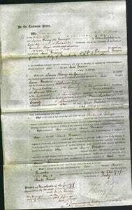 Court of Common Pleas - Ann Mason-Original Ancestry