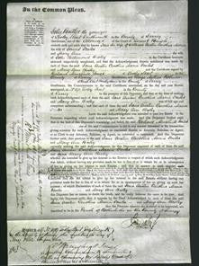 Court of Common Pleas - Jane Austin, Caroline Maria Peales and Mary Ann Bisley-Original Ancestry