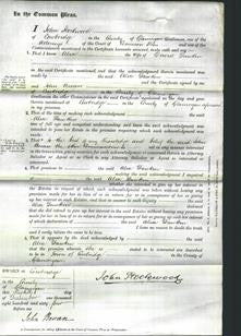 Court of Common Pleas - Alice Dawkin-Original Ancestry