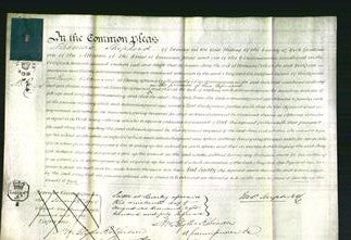 Court of Common Pleas - Amy Cook-Original Ancestry