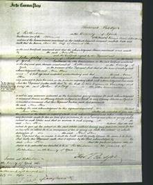 Court of Common Pleas - Ann Stone-Original Ancestry