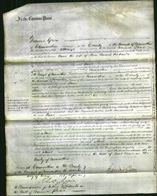 Court of Common Pleas - Anne Richards-Original Ancestry