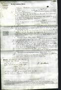 Court of Common Pleas - Ellen Simcock and Catherine Walley-Original Ancestry