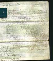 Court of Common Pleas - Mary Ann Dykes Cater-Original Ancestry