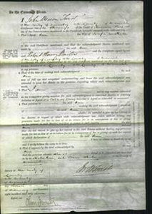 Court of Common Pleas - Ann Cattell-Original Ancestry