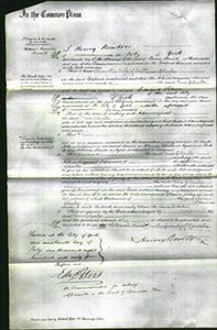Court of Common Pleas - Ann Clarke-Original Ancestry