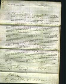 Court of Common Pleas - Ann Boughey-Original Ancestry