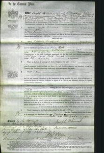Court of Common Pleas - Alice Driver-Original Ancestry