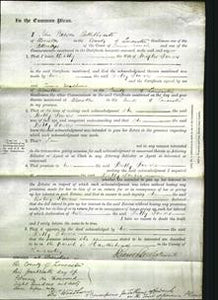 Court of Common Pleas - Betty Towers-Original Ancestry