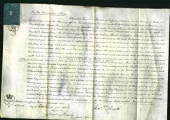 Court of Common Pleas - Elizabeth Taviant-Original Ancestry