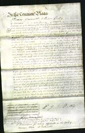 Court of Common Pleas - Sarah Bridger and Mary Guile-Original Ancestry