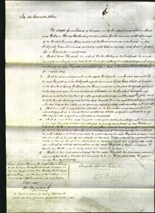 Court of Common Pleas - Elizabeth Worley-Original Ancestry