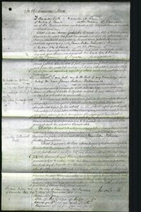 Court of Common Pleas - Annie Zuhleke Baines-Original Ancestry