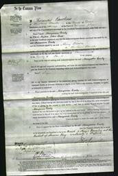 Court of Common Pleas - Maryanne Emily Lane-Original Ancestry