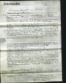 Court of Common Pleas - Agnes Metherell-Original Ancestry