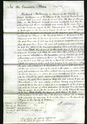 Court of Common Pleas - Ann Allen-Original Ancestry