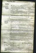 Court of Common Pleas - Eliza Langridge-Original Ancestry