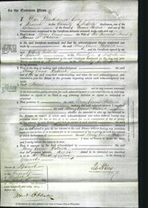 Court of Common Pleas - Mary Anne Pattrick-Original Ancestry