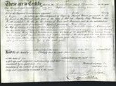 Deed by Married Women - Ann Laura Thorold-Original Ancestry