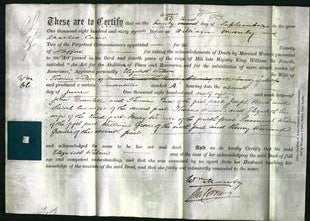 Court of Common Pleas - Eliza Nuthall-Original Ancestry