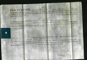 Deed by Married Women - Emily Williams-Original Ancestry