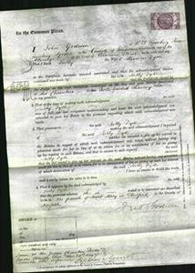 Court of Common Pleas - Sally Dyke-Original Ancestry