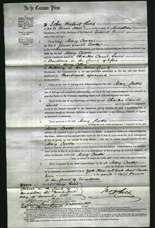 Court of Common Pleas - Mary Cooke #2-Original Ancestry
