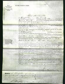 Court of common Pleas - Anne Usher-Original Ancestry