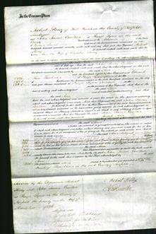 Court of Common Pleas - Ann Storey-Original Ancestry