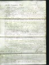 Court of Common Pleas - Mary Wells-Original Ancestry