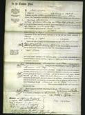 Court of Common Pleas - Susanna Shoudley and Eliza Butcher-Original Ancestry