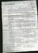 Court of Common Pleas - Mary Ann Powley-Original Ancestry