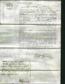 Court of Common Pleas - Ann Maria Woodwards-Original Ancestry