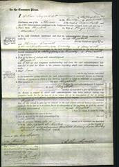 Court of Common Pleas - Elizabeth Marsden-Original Ancestry